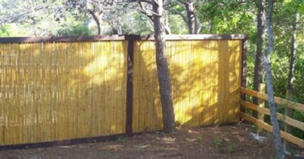 Bamboo privacy fencing green thumb ideas tips for Green privacy fence ideas