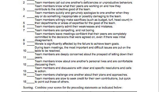 5 dysfunctions of a team  team assessment questionnaire