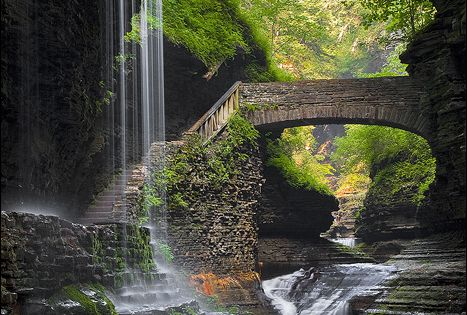 GARDEN BUCKET LIST | Waterfall Bridge, Watkins Glen, New York
