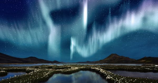 Northern Lights Tour from Reykjavik: Lobster Dinner, Lava Caves and Eyrarbakki northernlights