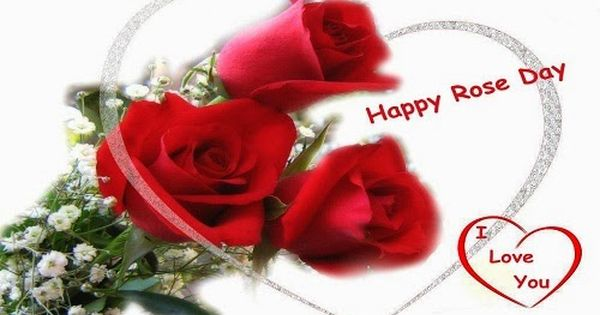 Happy Rose Day 2017 Shayari Messages Quotes Sms Whatsapp Status Here We Also Provid Beautiful Red Roses Images Rose Flower Wallpaper Red Roses Wallpaper