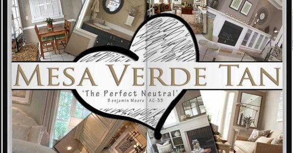 Amanda Loves Benjamin Moore Mesa Verde Tan Designer