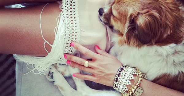 Cute! outfit fashion details bracelets armparty armcandy puppy fringe summer effortless casual