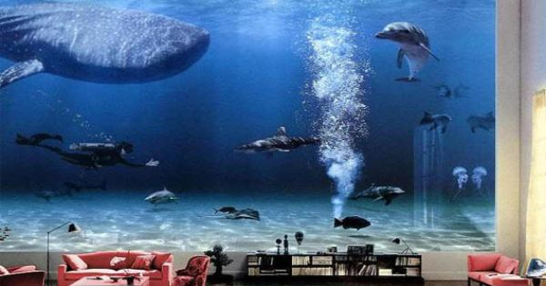 Bill Gates Living Room Aquarium Wow Apartment Home Decor Pinterest Bill Gates Gates
