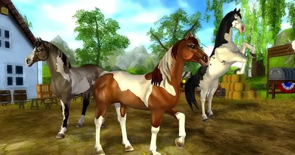 brand new paint horses coming soon star stable online pinterest actualit s chevaux et. Black Bedroom Furniture Sets. Home Design Ideas