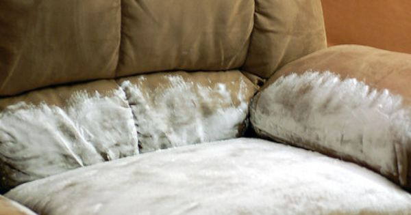 Someone Vomit All Over Your Couch And After Cleaning It Up