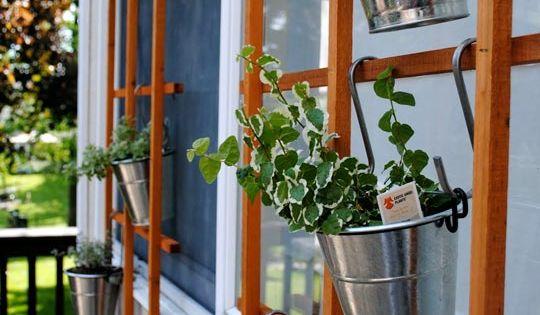 Love this trellis herb wall! Fantastic!