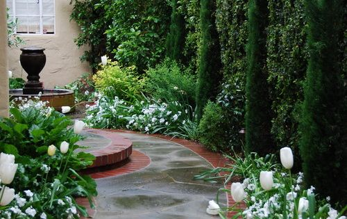 Classic entry in san francisco photo verdance fine for Verdance landscape design