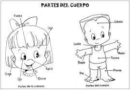Resultado De Imagen Para Dibujos De El Cuerpo Humano Y Sus Partes Spanish Lessons For Kids Learning Spanish For Kids Classroom Fun
