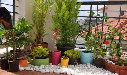 13 Awesome Ways To Decorate Your Balcony With Pebbles Small Patio Garden Small Balcony Garden Apartment Garden