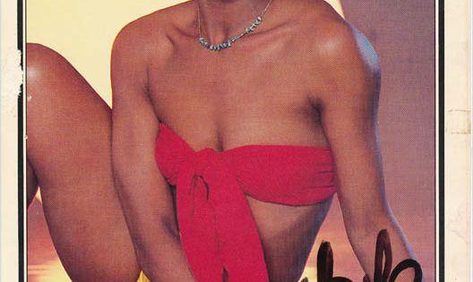Loletha Elayne Lola Falana Born September 11 1942 In