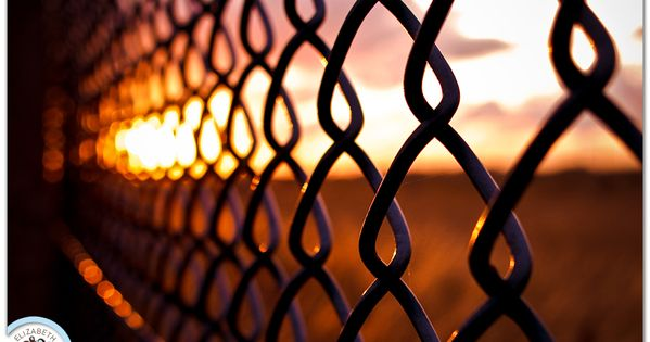 I'm currently a little obsessed with fence photos, especially ones with a