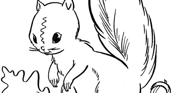 Top 25 Free Printable Squirrel