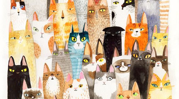 #illustration drawing cats gatti illustrazioni disegni