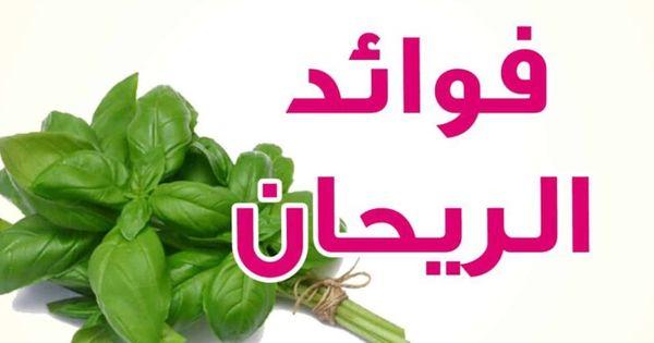 فوائد عشبة الريحان للجسم وأضرارها Herbs Vegetables Spinach