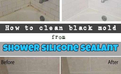 How To Clean Black Mold From Shower Silicone Sealant Remove Black Mold