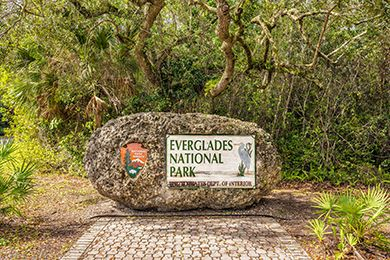 20 Best Things To Do With Kids In Everglades National Park Fl Family Attractions Tips Before You Go On Fam Everglades National Park National Parks Everglades