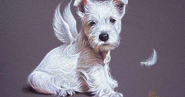 Sale - Gifts for Westie Owners | World's Largest Store For ...