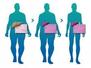 Pin On Body Matters