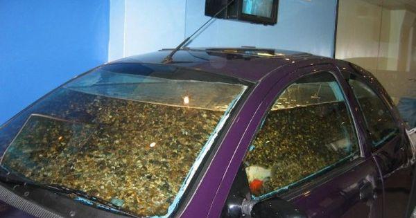 Aquarium beds luxury fabulous impressive technology for Luxury fish tanks