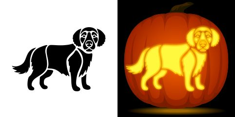 Golden retriever pumpkin carving stencil free pdf pattern
