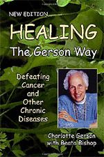 Pin On Gerson Therapy Approved Recipes