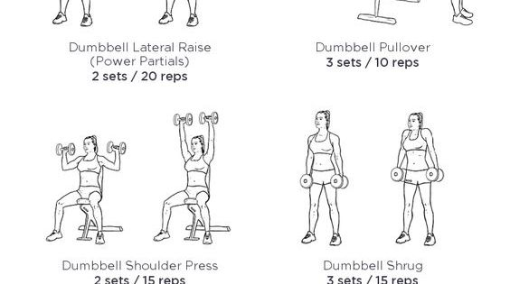 arms  shoulders and back workout  workoutlabs  workoutlabs  customworkout