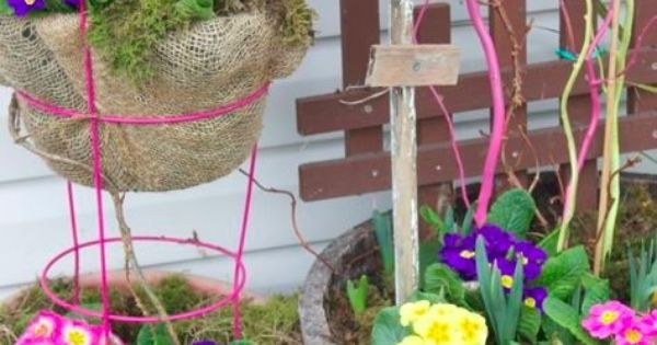 Spray paint a tomato cage as plant holder