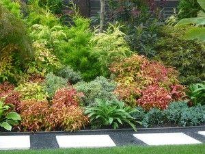 Nandina Firepower Gardening Made Easy Providing Garden Design Garden Ideas Plant Catalogue Garden P Plants Amazing Gardens Drought Resistant Landscaping