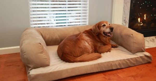 Amazon Com New Extra Large 54 X 34 Beasley S Couch Dog Bed Pet Supplies Extra Large Dog Bed Dog Couch Bed Dog Bed Large