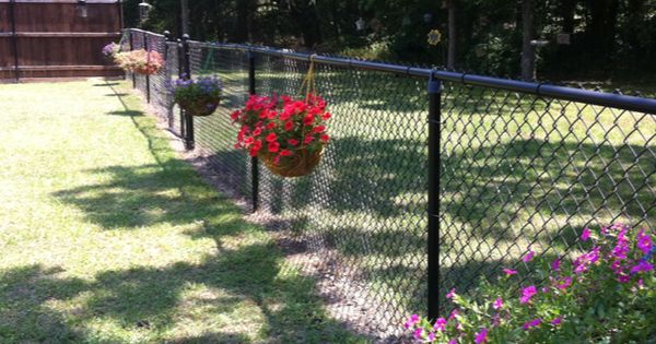 My Hanging Baskets On The Chain Link Fence Adding More