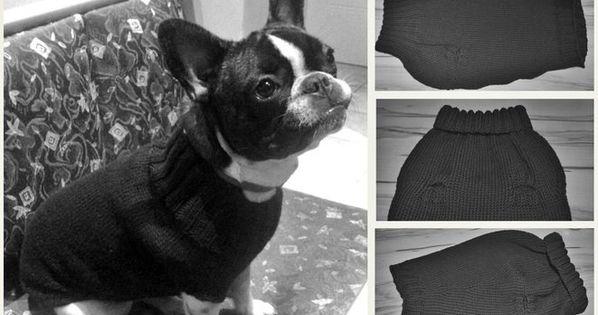 Pullover Fur Den Hund Stricken Diy Pulli Hunde Pullover Hundepullover Hundepullover Stricken