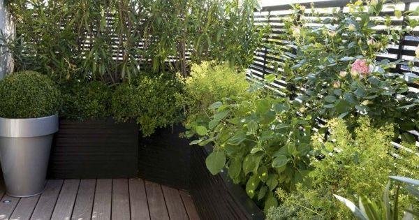 5 conseils f t s pour am nager un balcon cote maison for Amenager une terrasse avec des plantes