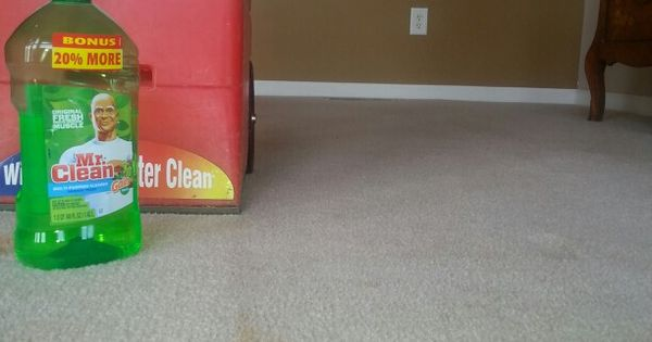 Use Mr Clean In A Rug Doctor Carpet Shampooer Cheaper