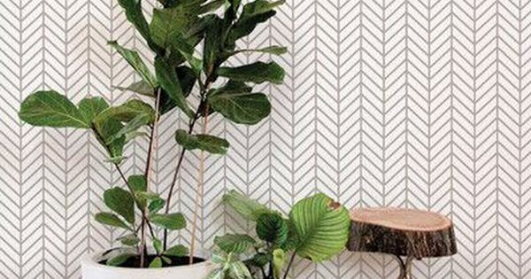 House Plants Are Great At Cleaning The Air And Some Don T Require That You Have A Green Th Wallpaper Accent Wall Herringbone Wallpaper Peel And Stick Wallpaper