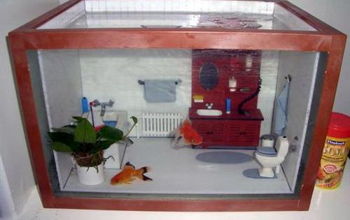Bathroom fish tank cute and fuzzy pinterest fish for Cute fish tanks