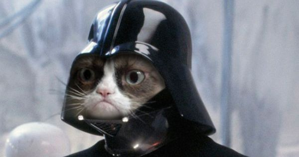 Grumpy cat meme as Darth Vader from Star Wars - Luke...I don't