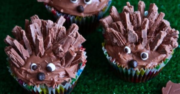 Hedgehog Cupcakes animal woodland chocolate