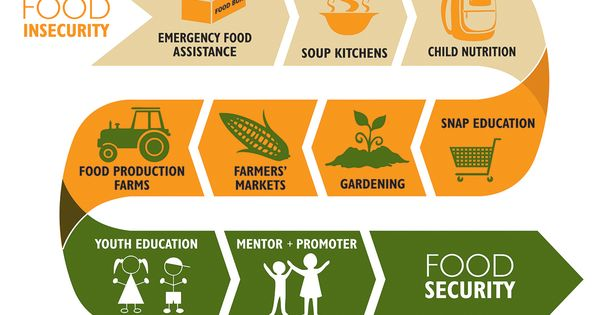 causes of food insecurity pdf