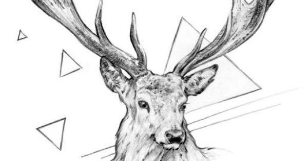 Dessin de cerf inspirations tatouages pinterest - Dessin bois de cerf ...