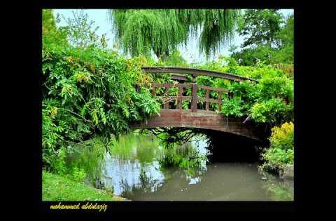 فيروز على جسر اللوزية Outdoor Garden Bridge Music