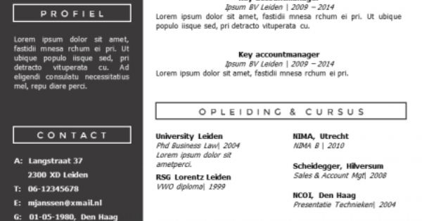 modern cv sjabloon  zelf te bewerken in ms office