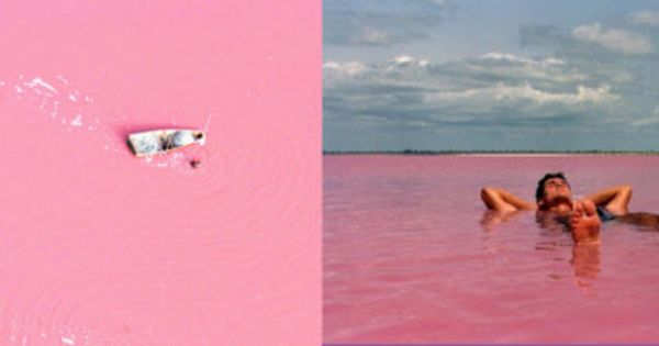 Daily Delight: Natural Pink Lake