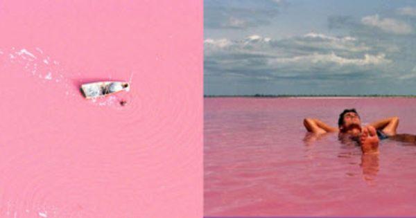 Daily Delight: Natural Pink Lake