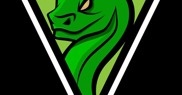 Mascot Branding And Logos