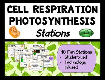 Comparing Photosynthesis Cellular Respiration Stations Activity Photosynthesis Photosynthesis And Cellular Respiration Station Activities
