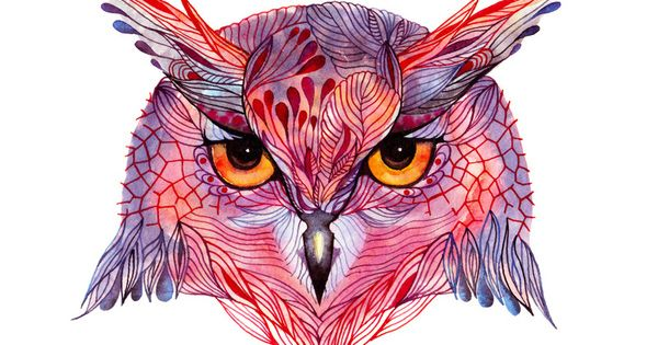 love colorful owl art