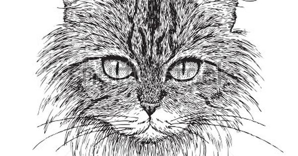 Simple Pen and Ink Drawings   Easy Pen And Ink Drawings Of ...