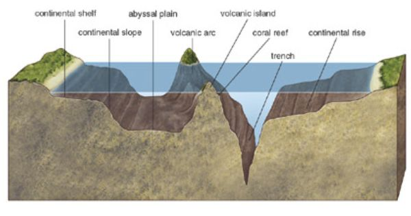 Geologic Landforms Of The Ocean Floor Chssociology Mr Hunter S Start Page Page 6 Montessori Science Ocean Earth Science