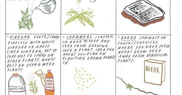 23 diagrams that make gardening so much easier weed and gardening - Weeding garden make work easier ...